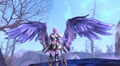 Aion_Wings_front